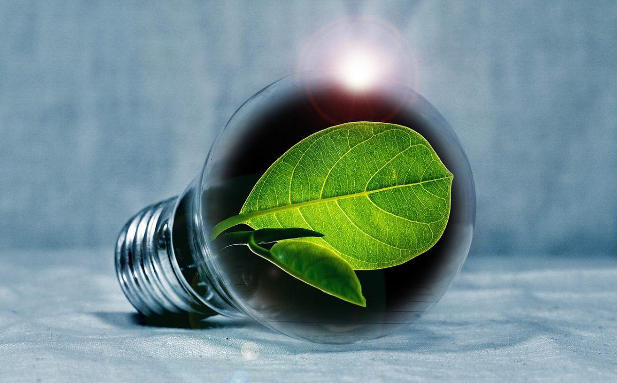 5 practical energy saving tips